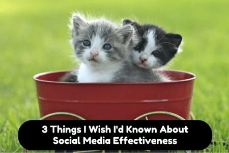 Social Media Effectiveness - No, Not Cat Memes!